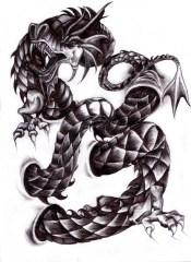 Karmaela Designs: Dragon tattoo design