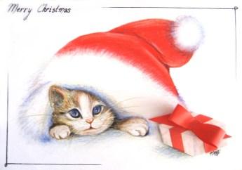 Meowrry Christmas