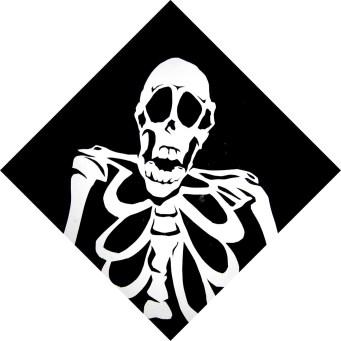 MacLeay's Museum - Skeleton