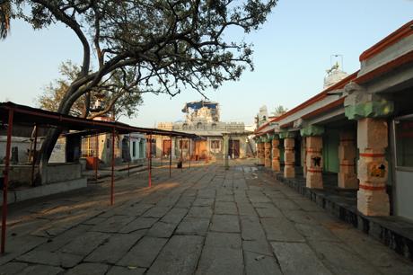 hassanamba temple, hassan