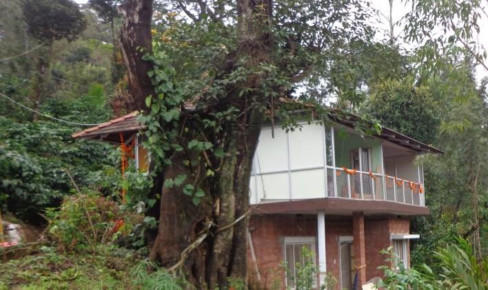 Prashanthi Guha Resort, Coorg