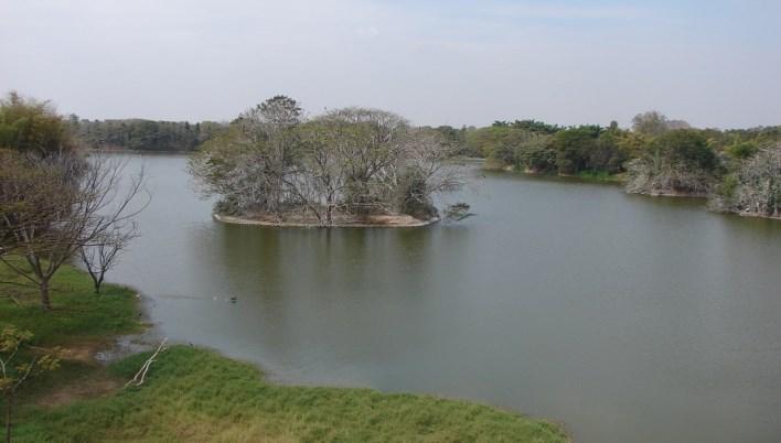 Karanji lake, Mysore. Photographer Nagesh Kamath