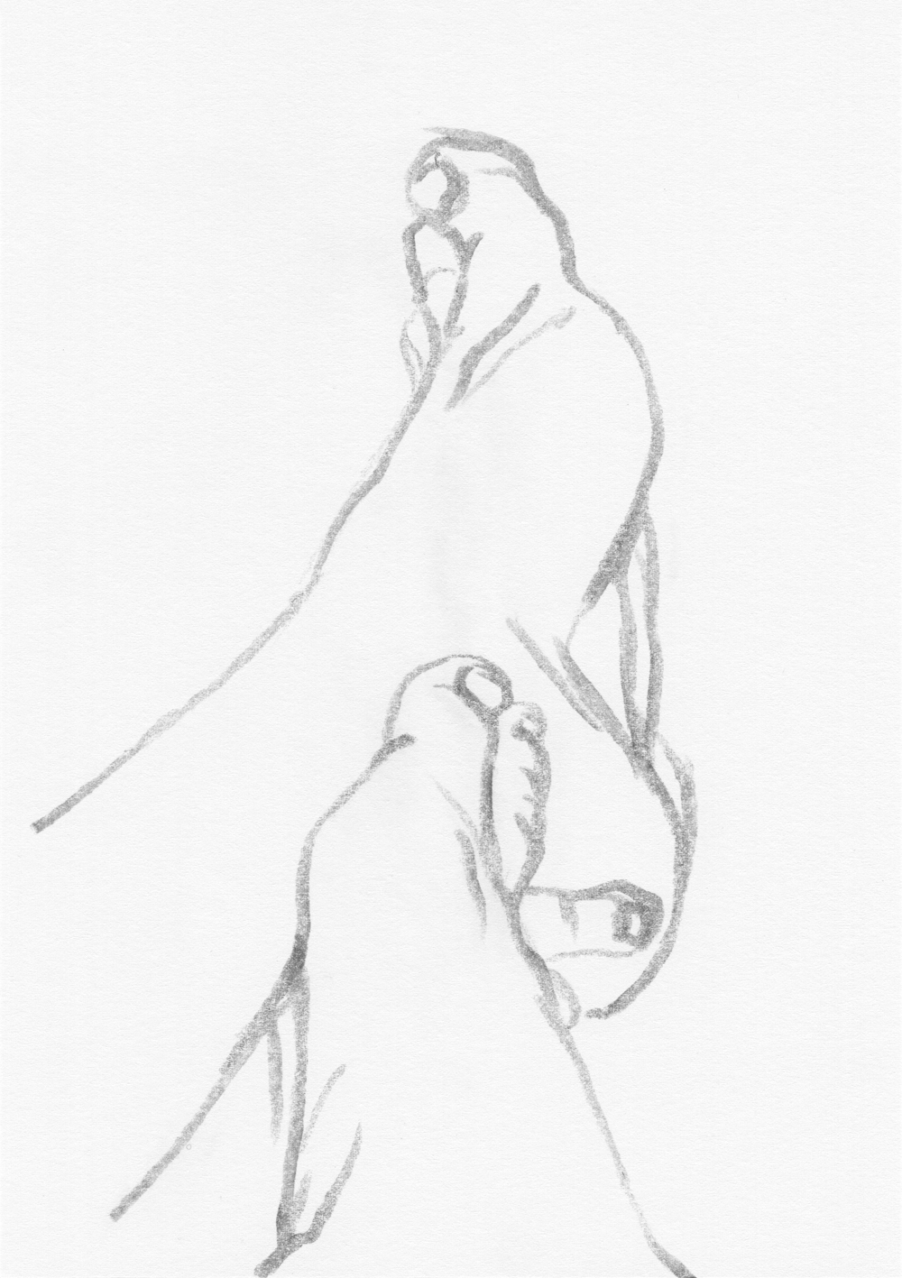 Sketches - Pencil Drawings - Figure Drawing : The sketch of my feet IV, pencil drawing, 2017.