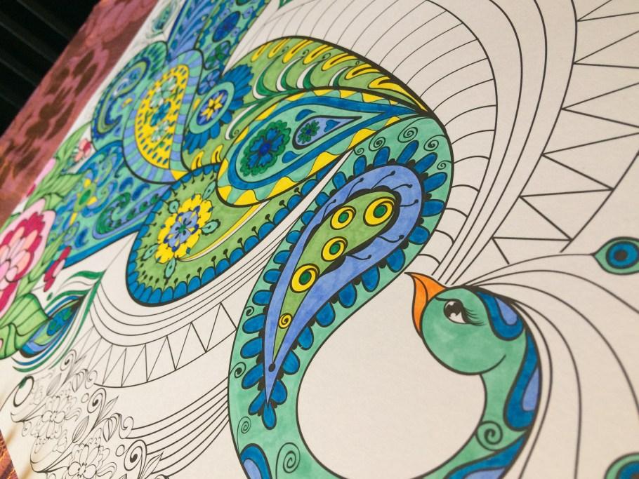 2016-08-27 peacock