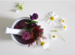 Mörser und Stößel mit Heilpflanzen