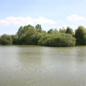 Les basses Bertherries, geweldige accommodatie, ruimte genoeg om te vissen