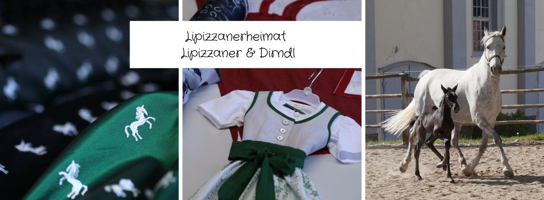 Lipizzanerheimat - Lipizzaner & Dirndl
