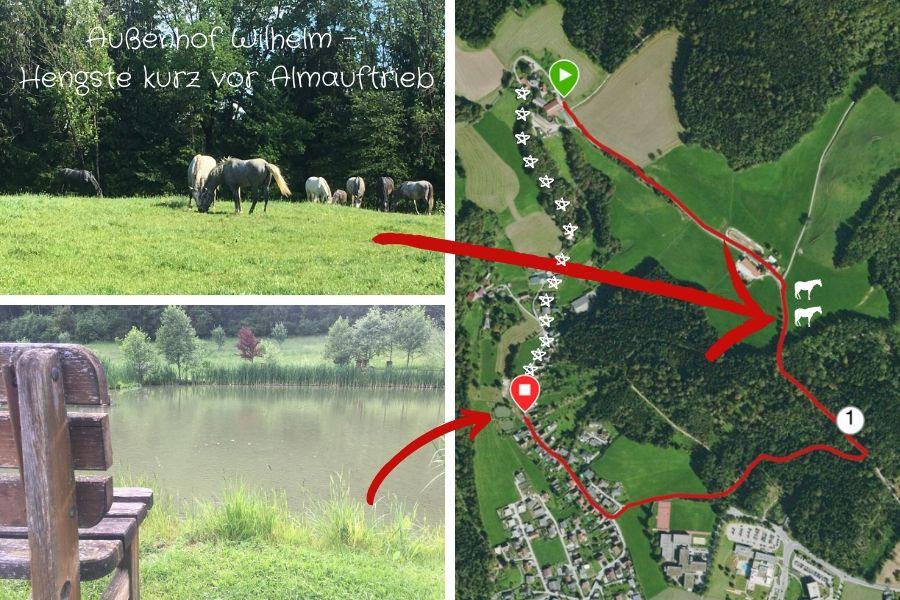 Laufstrecke Buschenschank Schachner - Außenhof Wilhelm - Dechantwald - Teichanlage Wascher (Karpfenking)