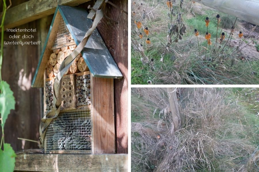 Insektenhotel oder doch Winterquartier!