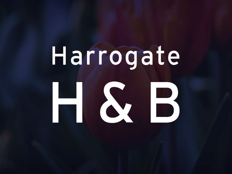 Harrogate logo design