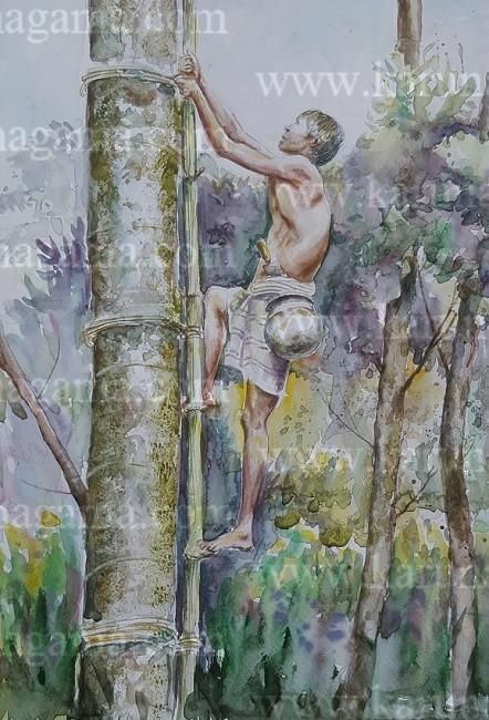 Online, Art, Art Gallery, Online Art Galley, Sri Lanka, Karunagama, Watercolor, Water Colour, Toddy Industry, Toddy in Sri lanka, Sri lankan People, Tree climber, Tree Climber Paintings, Sri lanka paintings,