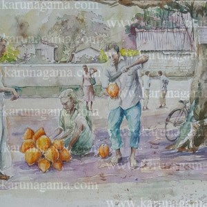 Online, Art, Art Gallery, Online Art Galley, Sri Lanka, Karunagama, Watercolor, Water Colour, Sri lankan People, People, People paintings, King Coconut , Sri lanka King coconut, King coconut paintings, Sri lanka paintings,