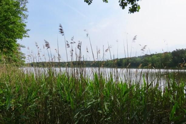 (c) kaschpar, Petersdorfer See