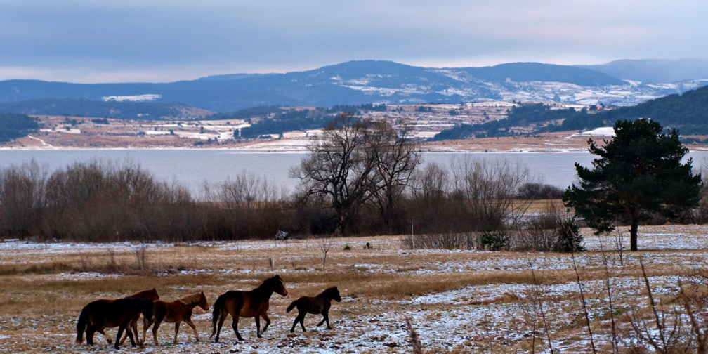 8 fun things to do in Bulgaria in winter