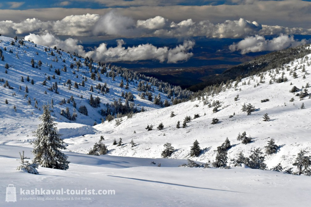 Top Guides snowshoeing trips are a recipe for gorgeous winter mountain views!