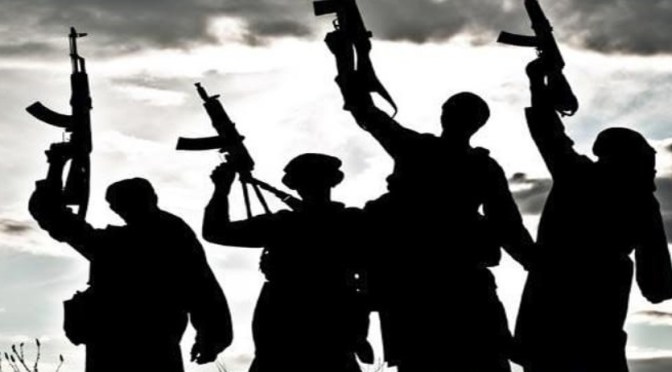 16 Years Old Among Two Militants Killed in Pulwama Fidayeen Attack