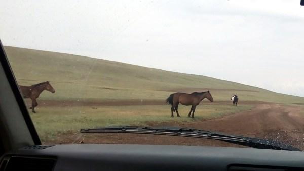 И еще немного монгольских дорог