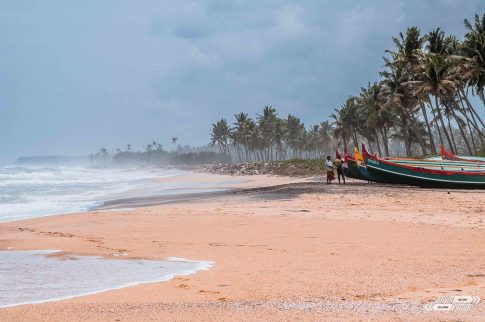 Kerala Indie