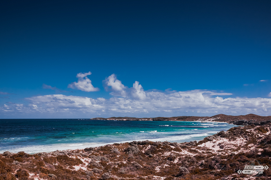 Wyspa Rottnest