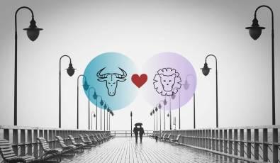 الثور والأسد التوافق في الحب والزواج والعلاقة والجنس