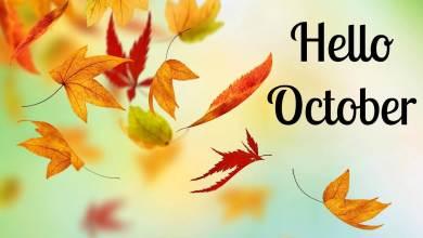 Photo of يوم 29 أكتوبر تاريخ ومعلومات الحظ وتوقعات الفلك والأبراج اليومية