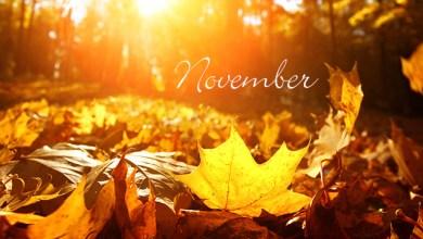 Photo of يوم 14 نوفمبر تشرين الثاني تاريخ ومعلومات الحظ وتوقعات الفلك والأبراج اليومية