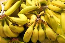 Bananer er en rigtig god kulhydratkilde