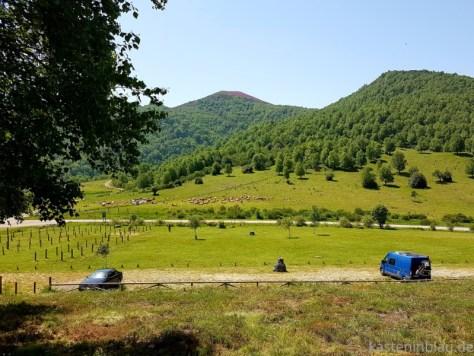 kasteninblau in Asturien
