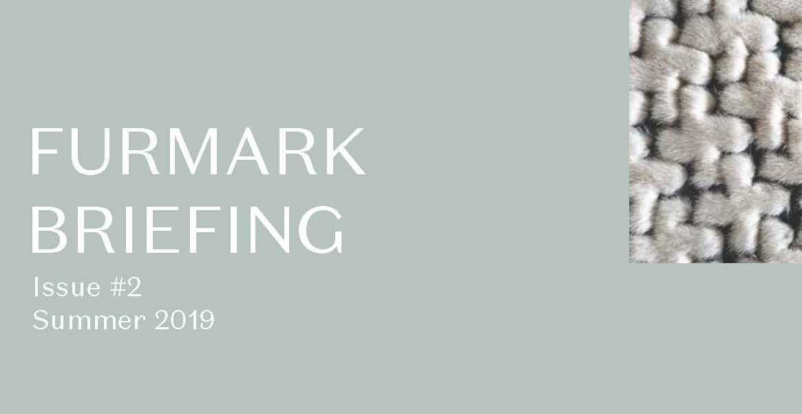 FURMARK-Briefing-Summer-20194_Page_1.jpg?fit=1165%2C601&ssl=1