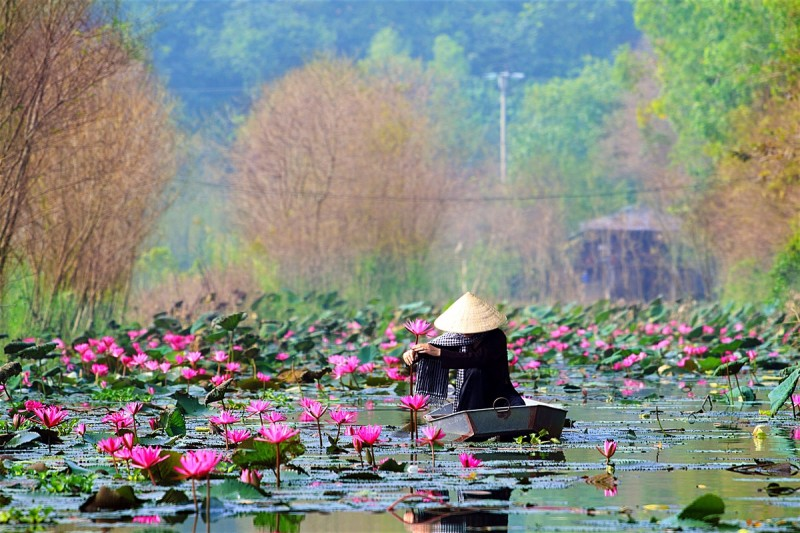 Travel Itinerary Through Vietnam From Hanoi To Ho Chi Minh City