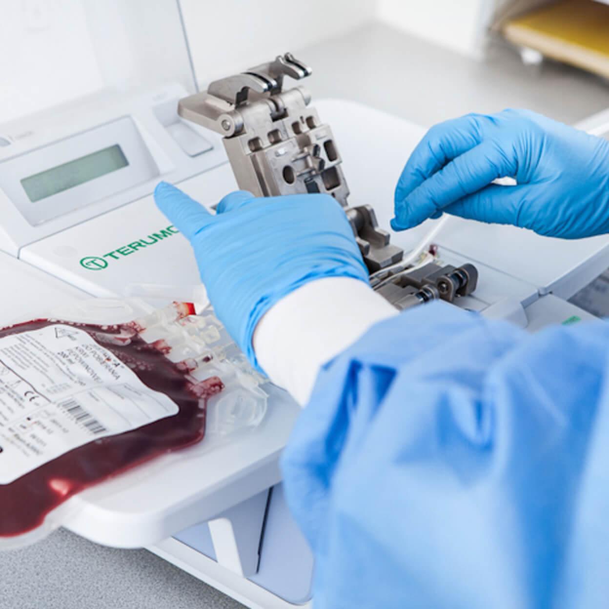 komórki macierzyste - bank