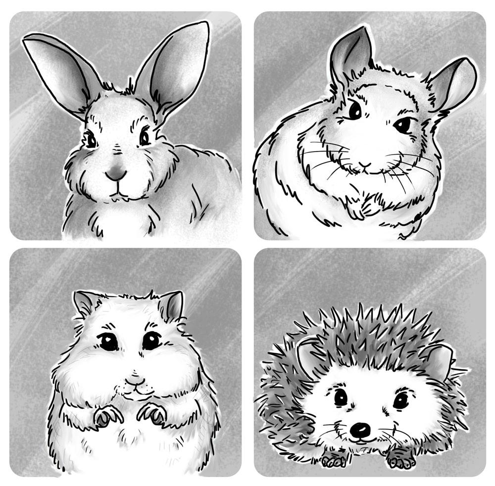 Logo - szynszyla, królik, chomik, jeż