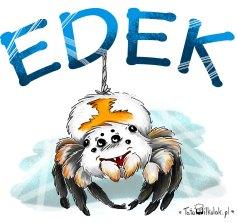 pająk-Edek