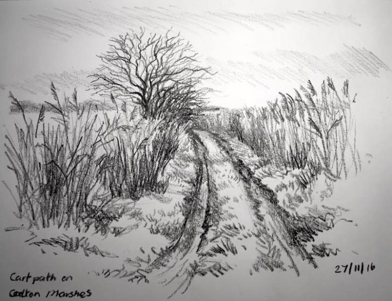 Cart path carlton marshes 332