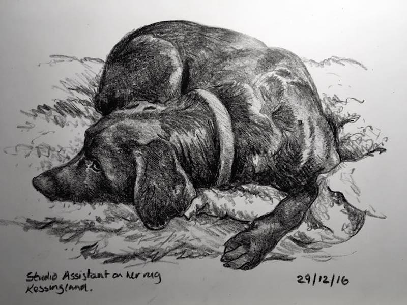 Let sleeping dogs lie 364