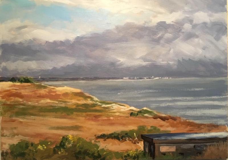 Dunwich cliffs North week 2