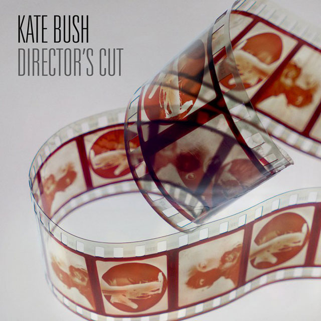 Image result for kate bush director's cut album cover