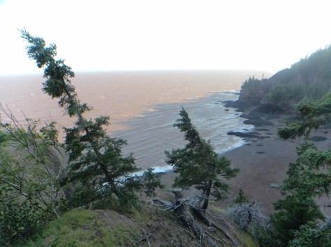 Hopewell rocks outlook