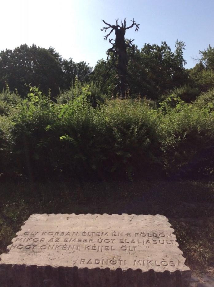 Dead Tree statue - Bekescsaba WWI Memorial