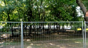 trees fence green festival ground