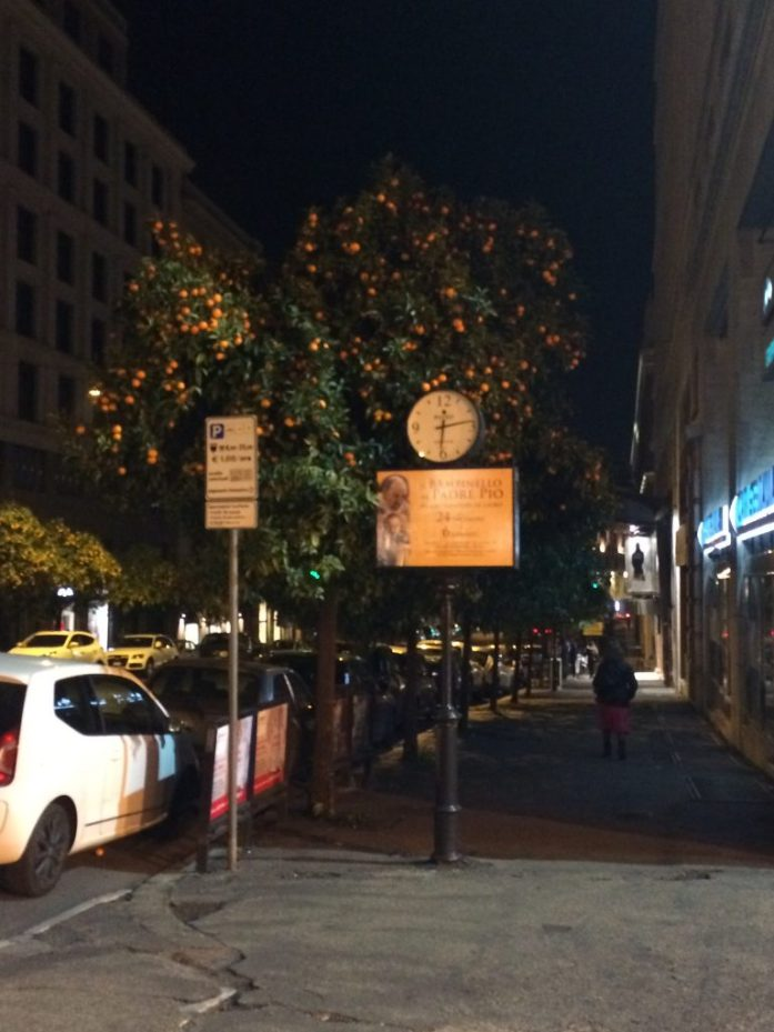 Surreal experience in Rome orange trees in the street