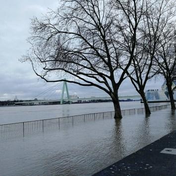 Sonntagspaziergang mit dem Rhein – Hochwasser in Köln