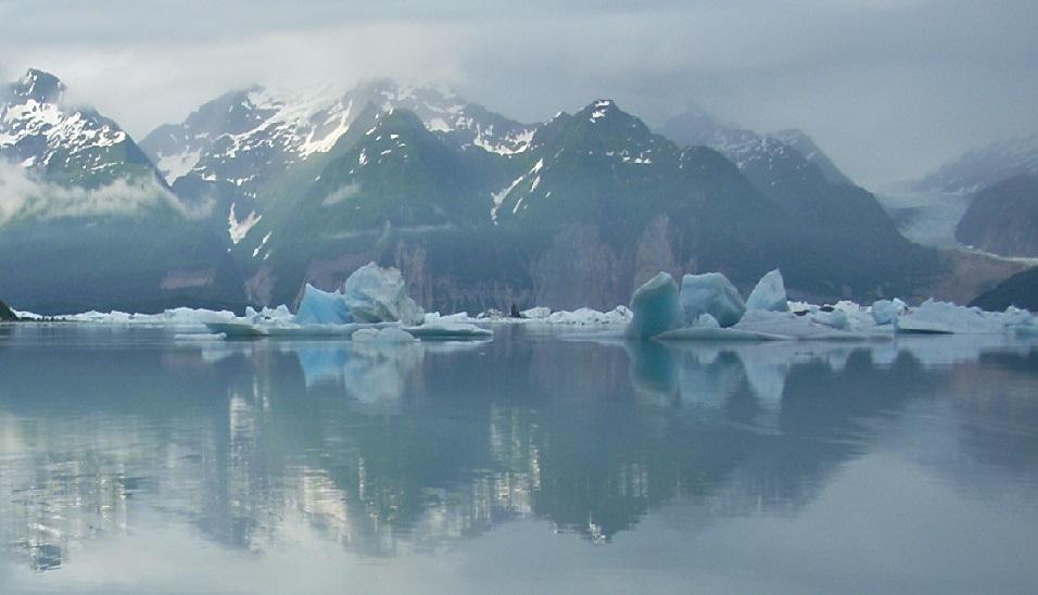Icebergs float like blue killer whales on Alsek Lake, Glacier National Park, Alaska