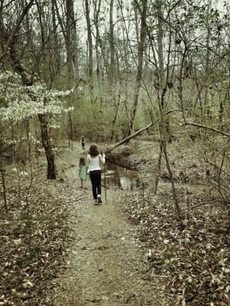 walking in the woods