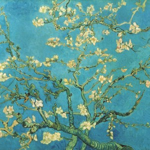 S0147742 Branch of an Almond Tree in Blossom. 1890. Image licenced to Karolina Skupien National Gallery of Canada by Karolina Skupien Usage : - 2000 X 2000 pixels © Art Resource, NY / Art Resource