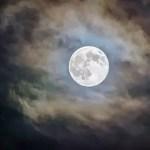 Seven Unique Ways to Celebrate Halloween