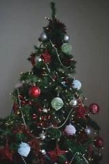 prepare tree for christmas