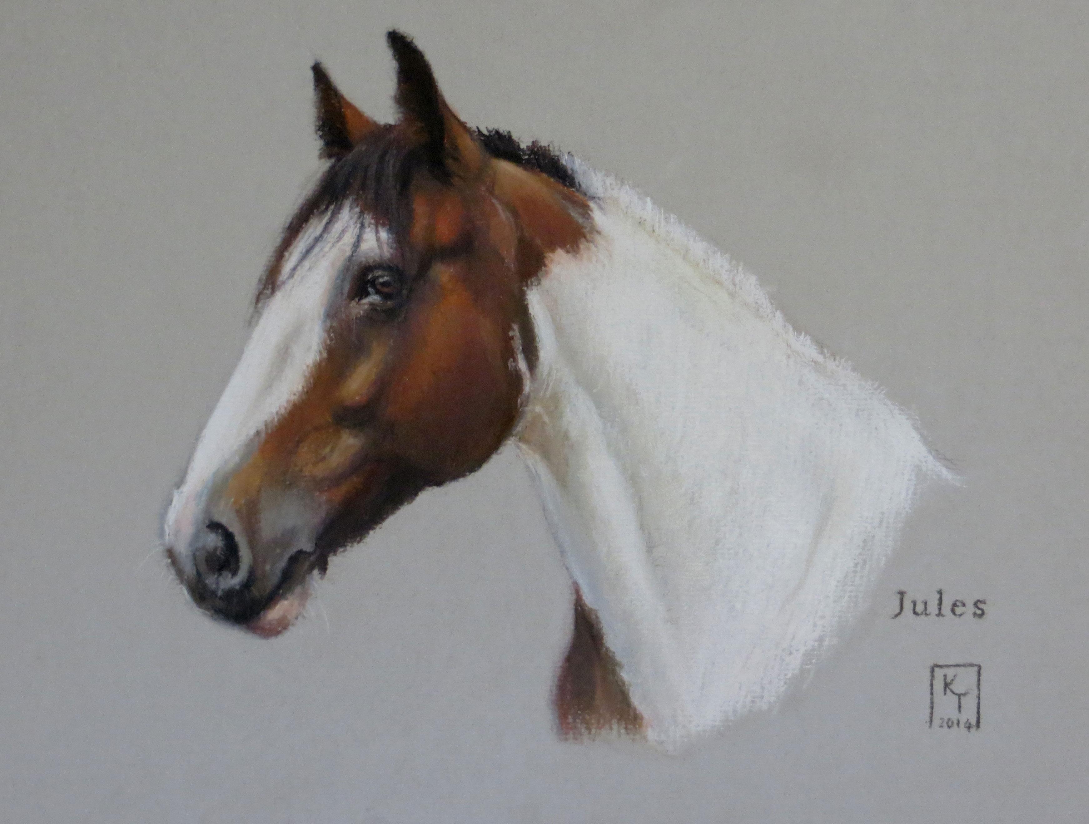 Pastel Portrait of a Horse