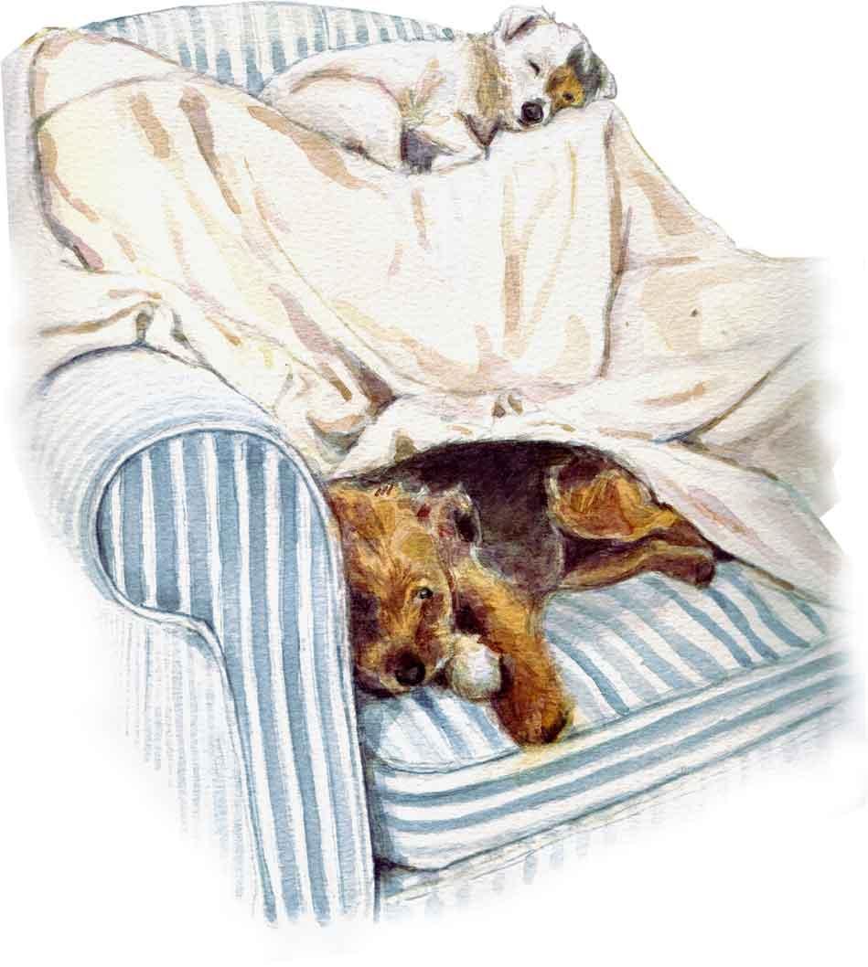watercolour dog illustration
