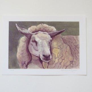 sheep art, sheep painting
